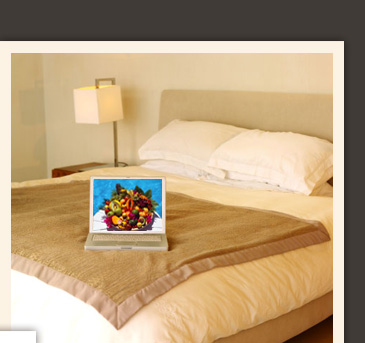 comfy guest house toronto bed and breakfast affordable rooms. Black Bedroom Furniture Sets. Home Design Ideas